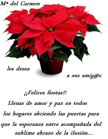 20101221213846-regalo-de-navidad-para-mis-amig-s-14-12-10-gata-coqueta.jpg