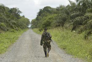 Las violaciones de Derechos Humanos en Colombia, a examen en Naciones Unidas