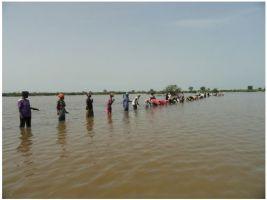 Premiado el trabajo de las mujeres recolectoras de Gambia en favor del desarrollo del país